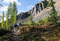 Two men hiking on the Pacific Crest Trail near Harts Pass, North cascades, Washington, USA.