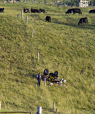 Tauranga-Farmer killed in quad bike accident, Welcome Bay