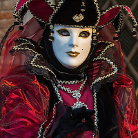VENICE, ITALY - FEBRUARY 25:  A woman dressed in Carnival Costume poses in in front of the Doge Palace on February 25, 2014 in Venice, Italy. The 2014 Carnival of Venice will run from February 15 to March 4 and includes a program of gala dinners, parades, dances, masked balls and music events.  (Photo by Marco Secchi/Getty Images)