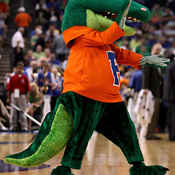 Mar 17, 2011; Tampa, FL, USA; The Florida Gators mascot during first half of the second round of the 2011 NCAA men's basketball tournament against the UC Santa Barbara Gauchos at the St. Pete Times Forum.  Mandatory Credit: Derick E. Hingle