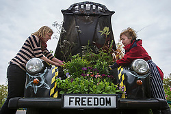 © licensed to London News Pictures. London, UK 17/05/2013. Artists Adele Howitt and Fiona Weir putting the last touches on their latest artwork at the Horniman Museum, a traditional black cab transformed into garden. By ripping out engine and passenger compartments they create a garden for bees. Car-Garden project aims to highlight the plight of the UK's bee population and promote the need for urban 'buffer zones' to encourage wildlife. The artwork will be exhibited at the Chelsea Fringe Festival. Photo credit: Tolga Akmen/LNP