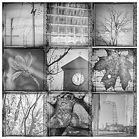 Multi views of nature and man made urban environment