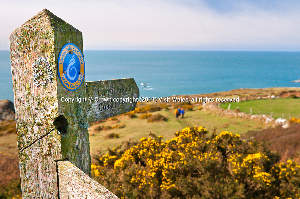 Wales Coast Path and Pembrokeshire Coast Path signs<br /> Pwllderi<br /> Pembrokeshire<br /> South<br /> Walking<br /> Signs
