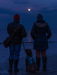 A couple and their dog look toward the Blood Wolf Moon rising over the beach at Portobello near Edinburgh. In the early hours of the morning, the moon will turn red as Britain experiences its last total lunar eclipse for 10 years.