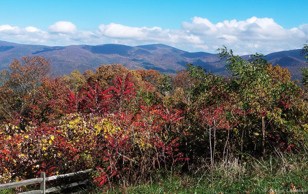 Mountains in autumn - View to the East from the Cahutta Overlook, Georgia, United States