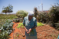 CAETITE, BRAZIL - OCTOBER 25, 2013:<br /> Amelia Silva, 78, and her family agreed to be paid $250 a month to permit Renova Energia with wind turbines on their 46-acre land. A string of wind-turbine parks, in the municipal of Caetite, are being erected in the windiest stretches of Bahia state, Brazil, on Friday, Oct 25, 2013. <br /> (Photo by Lianne Milton/For The Washington Post