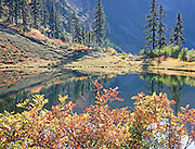 Autumn Colors Around Pond, Austin Pass, North Cascades Nat. Part, WA.