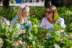 © Licensed to London News Pictures. 20/09/2019. London, UK. Two women enjoying the autumn sunshine near St Paul's Cathedral in London this lunchtime.  Photo credit: Vickie Flores/LNP
