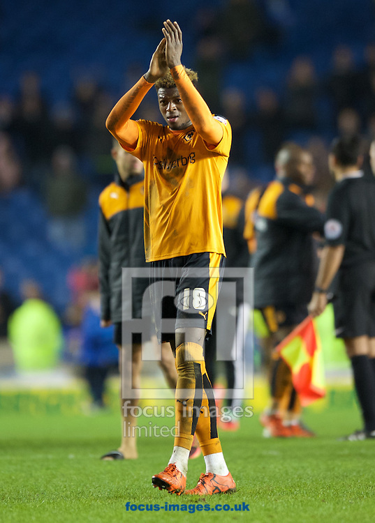 Dominic Iorfa of Wolverhampton Wanderers thanks the fans after their 0-1 win in the Sky Bet Championship match at the American Express Community Stadium, Brighton and Hove<br /> Picture by Alan Stanford/Focus Images Ltd +44 7915 056117<br /> 01/01/2016