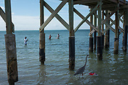 Redington Beach, Florida, USA., Friday, 20.09.19  Fishing from the beach, Contessa Pier, <br /> <br /> [Mandatory Credit; Pete SPURRIER]