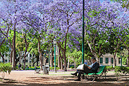 - Plaza Rodriguez Peña