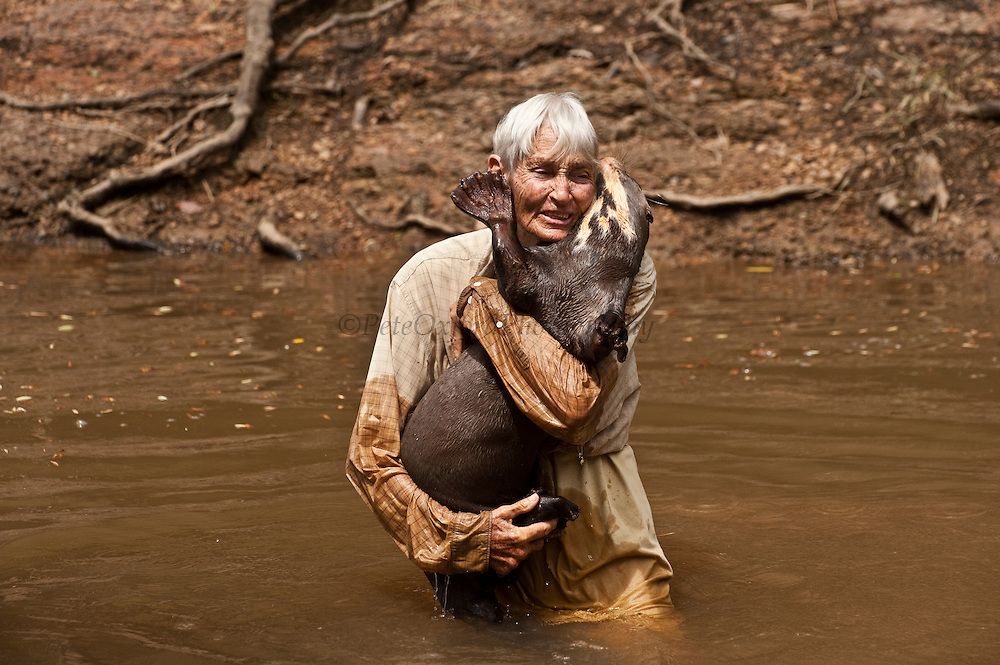 Diane McTurk &amp; Giant Otter (Pteronura brasiliensis) HABITUATED. Karanambu Otter Trust for re-introduction<br />