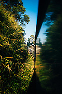 A train makes its way through tea country, Ella, Sri Lanka, Asia