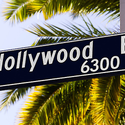 Picture of Hollywood Boulevard street sign with palm trees in the Hollywood district of Los Angeles in Southern California. Photo is high resolution and was taken in 2012.