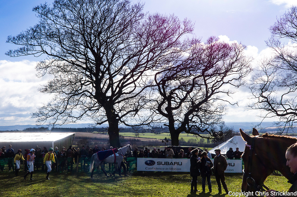 Corbridge, Northumberland, England, UK. 28th February 2016. The Tynedale Hunt hold their annual Point to Point horse racing fixture.