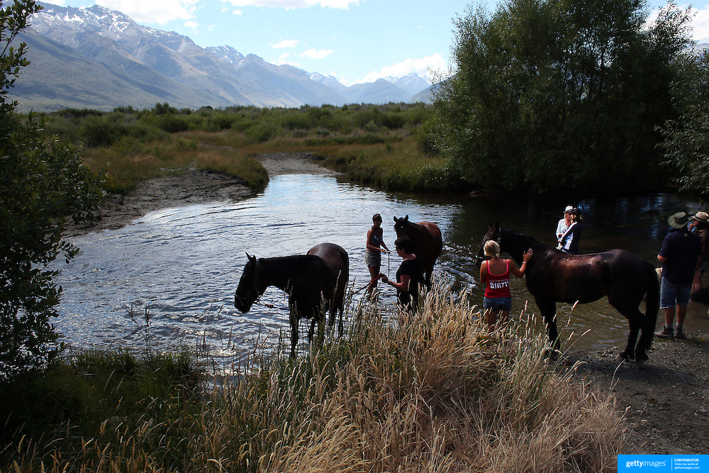 Horses cool off in a watering hole during the 50th Anniversary Glenorchy Race meeting. The races, which originally started in the 1920's, were resurrected in 1962 and have been run by local farmers and the rugby club on the first Saturday after New Years Day ever since. Glenorchy, Otago, New Zealand. 7th January 2012
