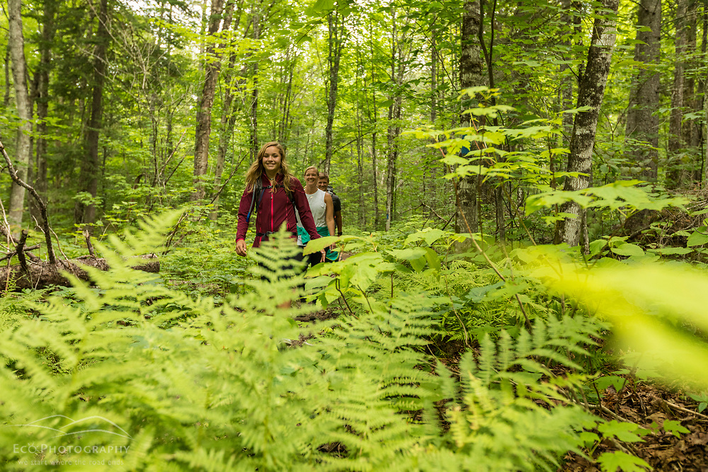 A woman and her son and daughter hike on the Loop Trail next to Deboullie Pond in Aroostook County, Maine. Deboullie Public Reserve Land.