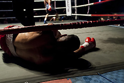 November 11, 2017 - Osorno, Chile - Osorno, Chile. 10 November 2017. TThe boxer from the city of Quellón, Ramon Contreras falls to the floor in the ninth round..The Chilean champion of the category Super Gallo Robinson ''Ray'' Laviñanza defeated Ramón ''Toro'' Contreras by KO and retained his national title after nine emotional rounds, where both touched the canvas at some point in Osorno, Chile. (Credit Image: © Fernando Lavoz/NurPhoto via ZUMA Press)