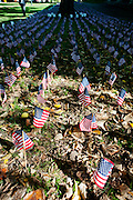 American flags, one for each vitim, stand on college green in rememberance of those killed in the september 11th attacks. Photo by: Ross Brinkerhoff