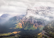 The soft light on an overcast and misty day following a severe early fall storm, saturate the fall colors on the slopes of peaks around Logan Pass. Glacier National Park, Montana, USA. The pass is closed over the winter months due to heavy snowpack and avalanches.