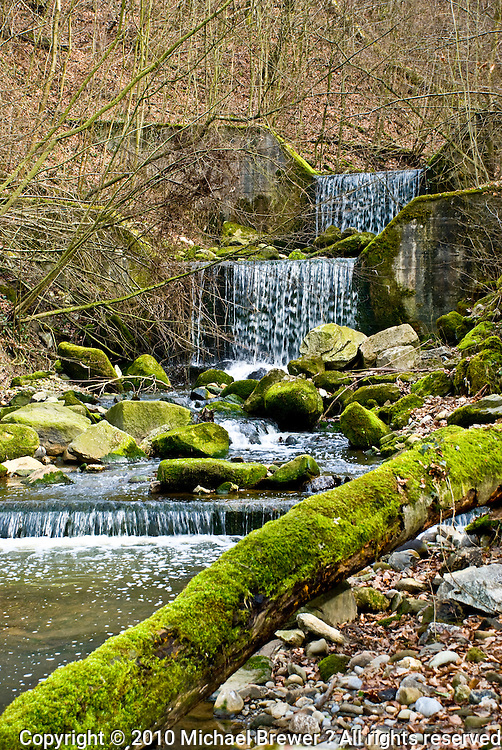 A series of man-made waterfalls and green, mossy rocks and trunks forms a beautiful, scenic view.