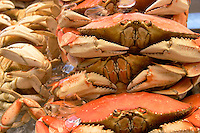 Dungeness Crabs on Ice at Fisherman's Wharf, San Francisco, California