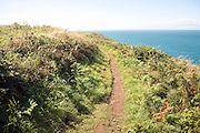 Coastal footpath near Trefin, Pembrokeshire Coast national park, Wales