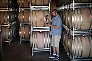 Bryan Weil, winemaker, Alexana Vineyard, Dundee Hills AVA, Willamette Valey, Oregon