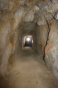 A adit of the abandoned  'Falling Man' gold mine in the Coleville National Forest, Washington. This mine hosts townsend's big-eared bats (Corynorhinus townsendii) during their long winter hibernaton.