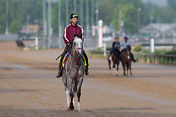 Derby 142 hopeful Lani with Eishu Maruuchi up were on the track for training, Sunday, May 01, 2016 at Churchill Downs in Louisville.