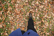 walking during autumn season