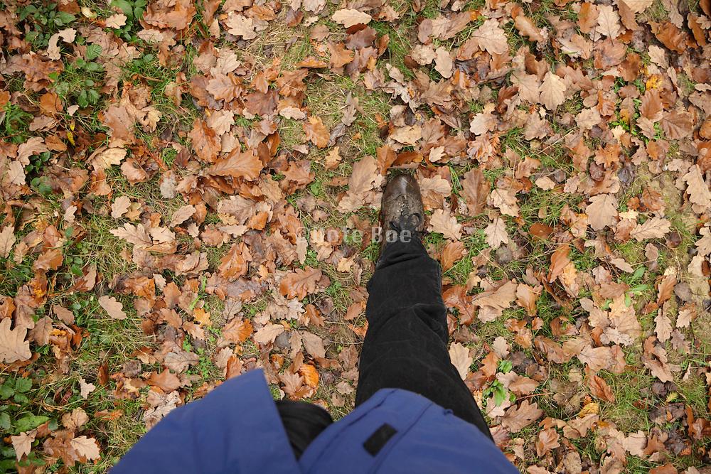 walking during autumn season