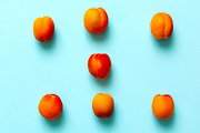 Apricots set of six  isolated over a blue background viewed from above, flatlay style
