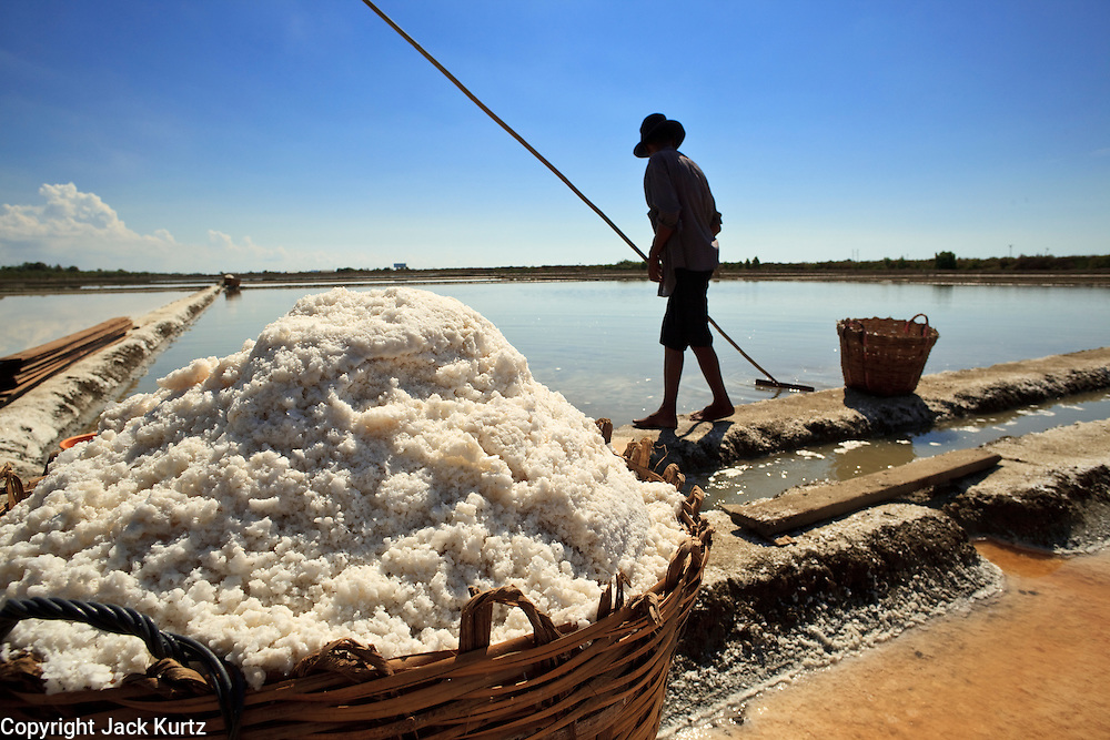 Mar 23, 2009 -- SAMUT SONGKHRAM, THAILAND: A workers drains a salt field near Samut Songkhram, Thailand. The salt farms between Samut Sakhon and Sumat Songkhram are Thailand's largest salt producing region. Salt is typically harvested for about six months of the year. The fields are prepared for salt farming as soon as the rainy season ends. First the fields are tamped down so they hold water, then they are flooded with salt water from either the Gulf of Siam or the Mae Khlong River (both are salty). After about two months, the first harvest is ready. The fields are drained and the salt picked up from the fields. Then the fields are flooded again and the process repeated. As the season goes on and the fields become saltier, the amount of time they are flooded is reduced till the end of the season when they may only be flooded for two or three days. Most of the workers in the salt fields are migrant workers from Isaan, an impoverished region in the northeast of Thailand. Once the rainy season starts and it's no longer possible to harvest salt the workers go home to work their small farms. The workers are paid based on the amount of salt their crew harvests.    Photo by Jack Kurtz