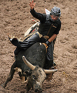 Bull Rider Conrad Bertin Kinsey hangs on while riding 208, Willie Riscilli, 27 July 2007, Cheyenne Frontier Days