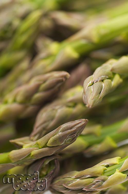 Asparagus, close-up