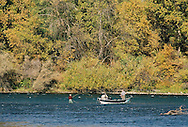 The Sacramento River is full of wild life.  Fly fishing and drift boat fishing are popular on the stretch of the Sacramento River that runs through the City of Redding.