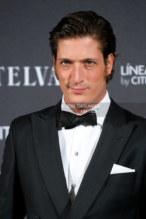 Luis Medina attends Telva Awards 2012 at Hotel Palace on November 6, 2012 in Madrid, Spain