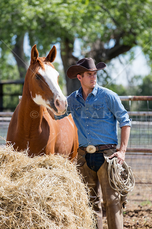 All American Cowboy with a horse on a ranch