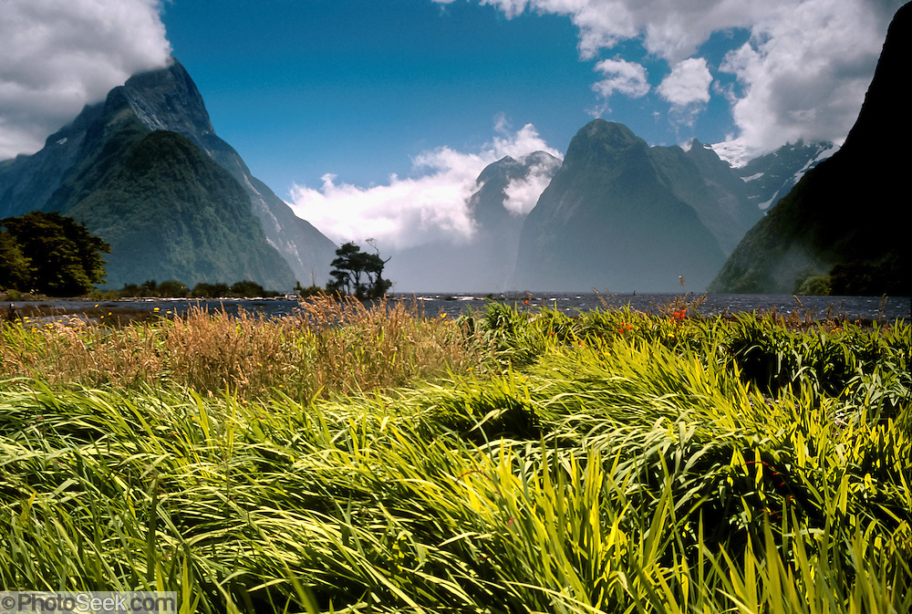 "Fiordland National Park, NEW ZEALAND: Milford Sound is a beautiful, deeply carved fjord. In geography, a ""sound"" is a large sea or ocean inlet (larger than a bay), but a fiord (or fjord) is a narrow sea inlet that was carved by glacier. Published in May/June 2004 Sierra Magazine, Sierra Club Outings."