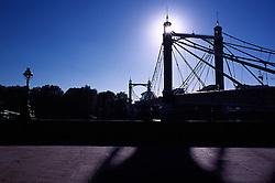 Silhouette of Albert Bridge on the River Thames, London, England, UK.