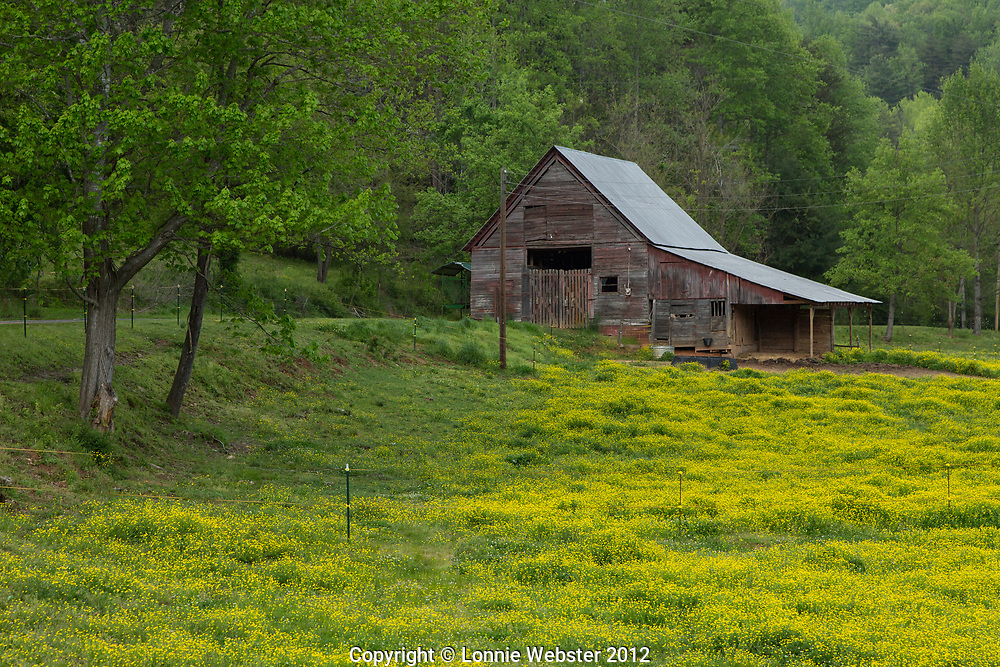 Old Barn in Parsonsville NC in the spring
