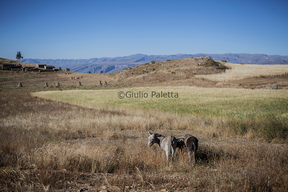 Near Anzaldo, in the Bolivian Andes