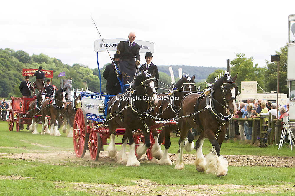 John Goodwin driving his own Shires<br /> Winner  Team Turnouts