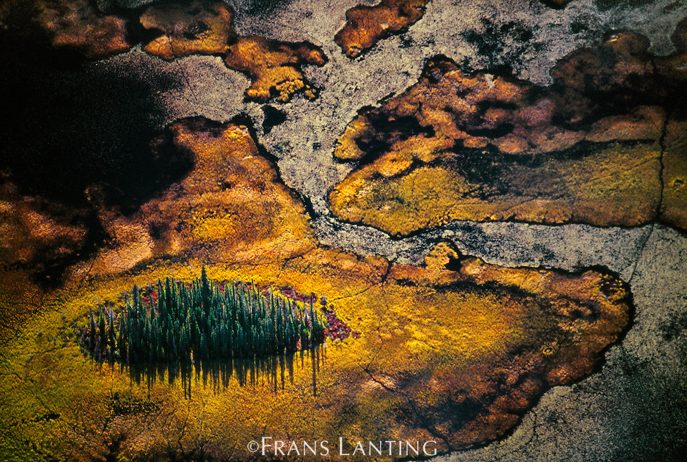 Wetlands (aerial), Wrangell-St. Elias National Park, Alaska
