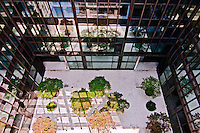 Courtyard at 866 United Nations Plaza
