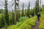The forest was a wonderful misture of Western Larch and Englemann's Spruce witha  few firs thrown in.  The understory included blueberries, mountain ash and a number of wildflowers.  The trail climbed through the forest with plenty of places to gaze out on the magnificient wildness in the Wenaha-Tuccanon Wilderness Area.