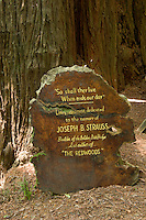 The Cathedral Tree at The Trees of Mystery, Klamath, California