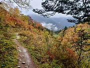 "Fall foliage colors at the foot of Byobuiwa rocks in Yokoo Valley, Hida Mountains, Chubu-Sangaku National Park, in the ""Northern Alps"" of the Japanese Alps, near Kamikochi, Nagano Prefecture, Japan."