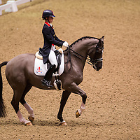 London International Horse Show 2012 - Olympia